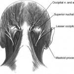 Chronic Occipital Nerve Headache- Case Report
